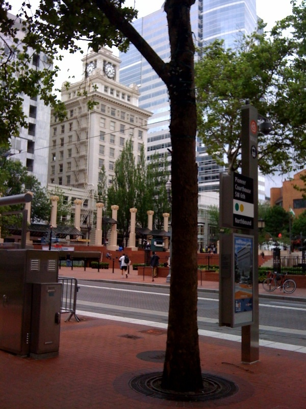 Streetscape In Downtown Portland