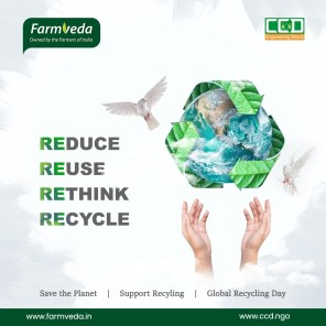 recycle_day copy