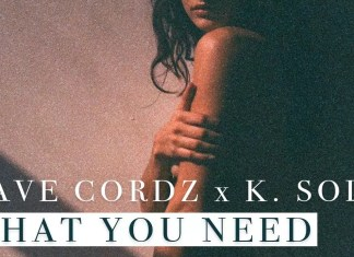 Dave Cordz - What You Need (feat. K. Sole)
