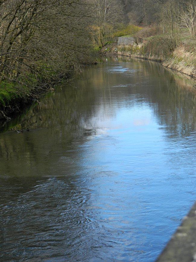 Looking upstream from below Dawsholm