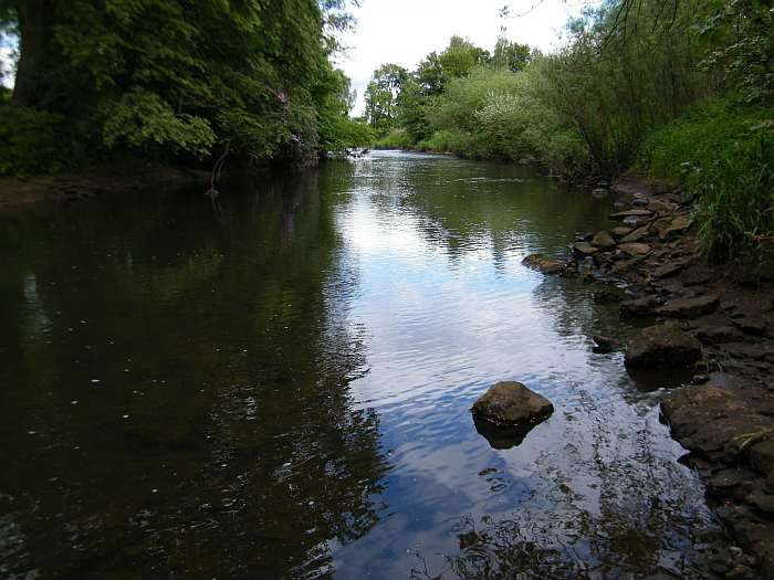 Looking upstream, a few risers but sporadic!