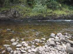 Clear highland river
