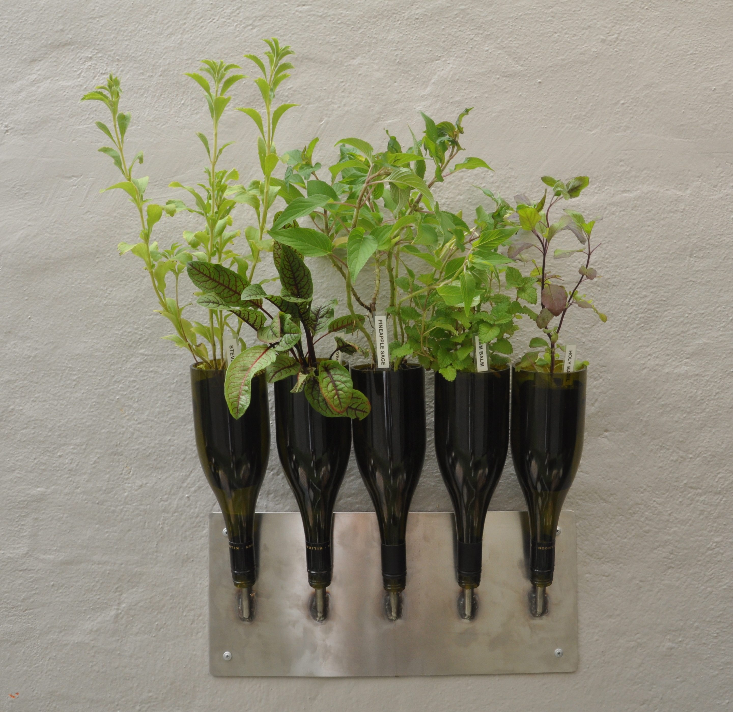 Cool Wine Bottle Planter For Gardens Inhabit Zone