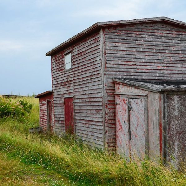 Fun Facts About Newfoundland