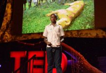 Kenyan Boy's Invention Scares Off Lions