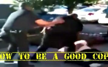 """How To Be A """"Good"""" Cop: Protect The Public From """"Bad"""" Cops Abusing Their Position (VIDEO)"""