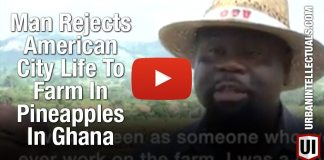 Man Rejects American City Life To Farm In Pineapples In Ghana