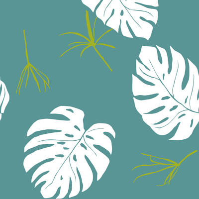 bbb-organic-green-carnation