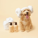innisfree-Dear-Pet-Shampoo-line