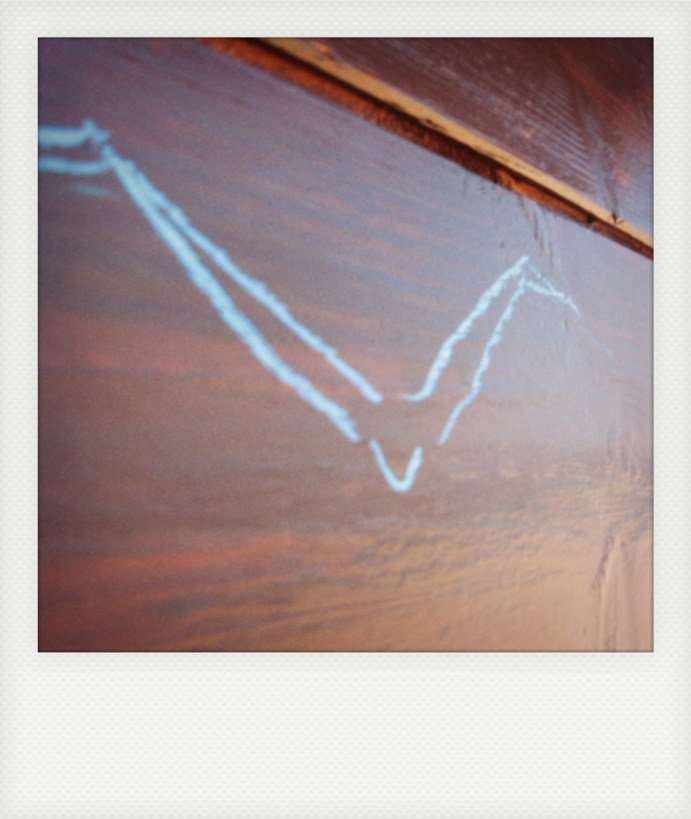 Erasable traces (seagull)