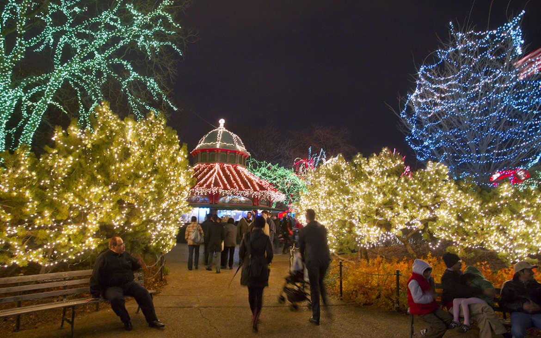 Illuminate Your Holiday Season at ZooLights