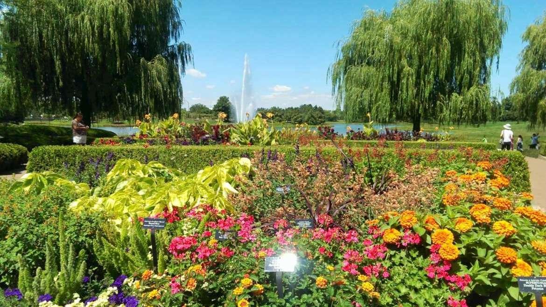 Lurie Garden Millennium Park Chicago