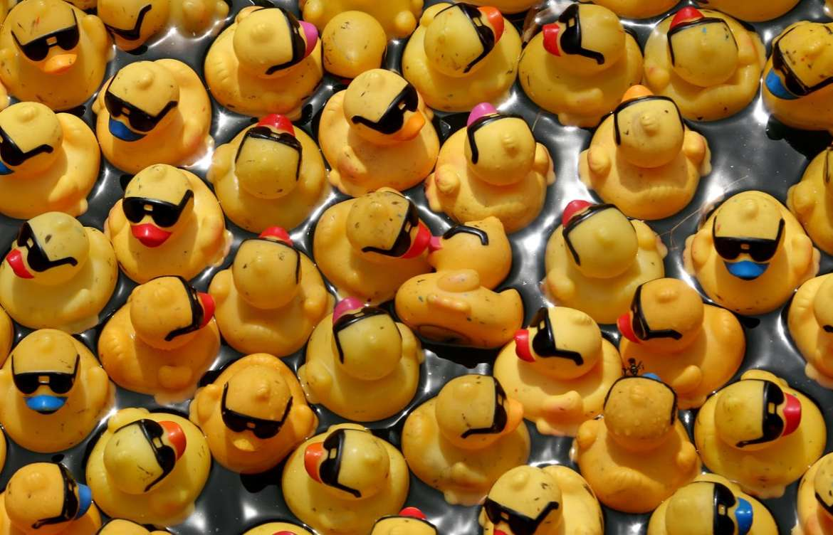 Why You Need to See the Windy City Rubber Ducky Derby | UrbanMatter