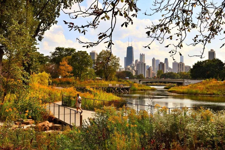 lincoln park zoo urbanmatter