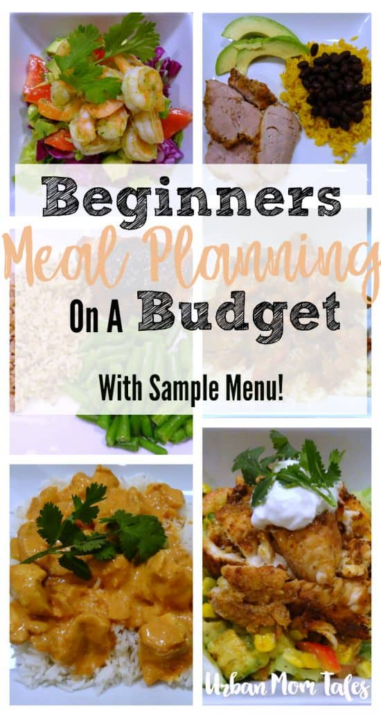Beginners Meal Planning on a Budget: With Sample Menu! · Urban Mom Tales