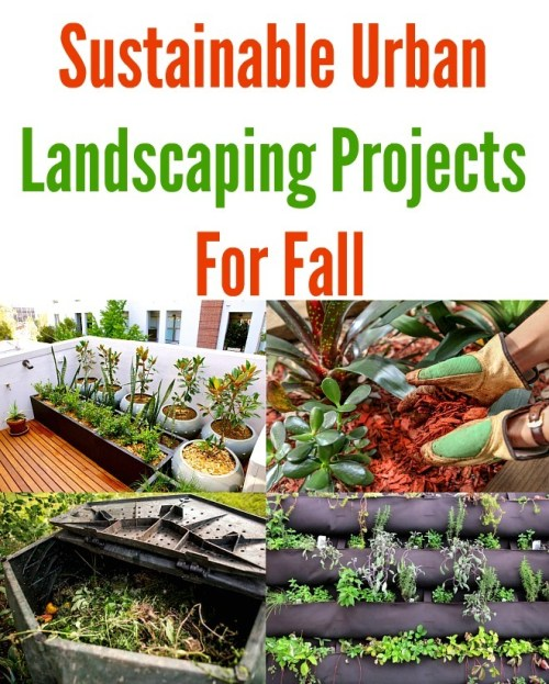 Sustainable Urban Landscaping Projects for Fall - Urban Naturale