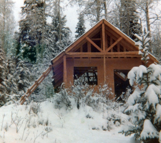 cabin with laddeer