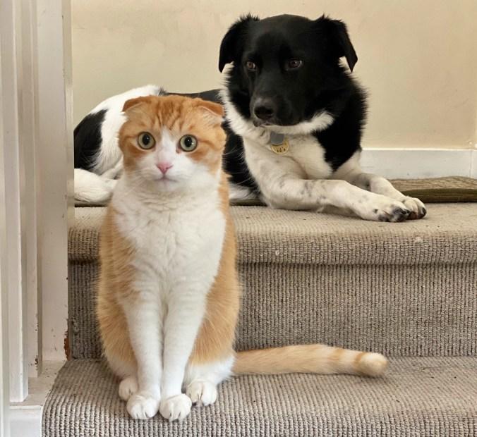 Edgar and Geordie