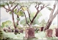 B Joni Vallon, The sady shide- mont Royal cemetary
