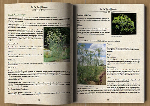 Lost Book of Remedies pages