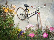 Biking in Midtown