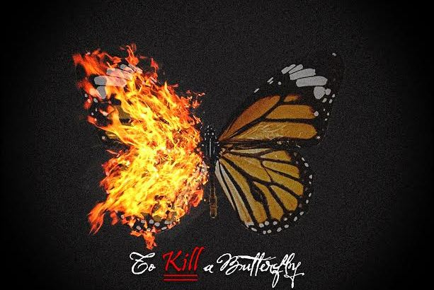 T Dubb O - To Kill A Butterfly (Audio/Free Download)