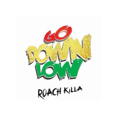 Roach Killa - Go Down Low (Prod. by DJ Surinder Rattan/Lyric Video)
