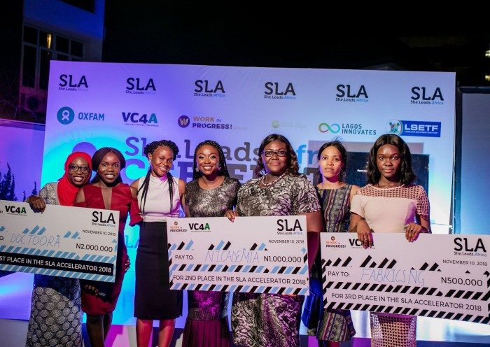 she leads africa accelerator 2019