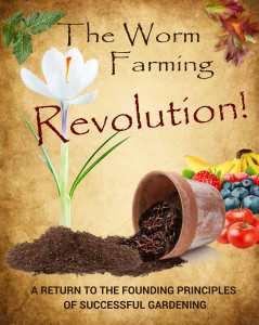 revolution-book-cover-for-web