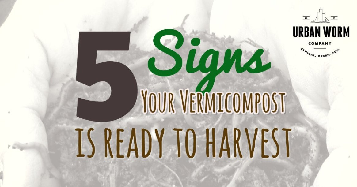 how-to-identify-finished-vermicompost