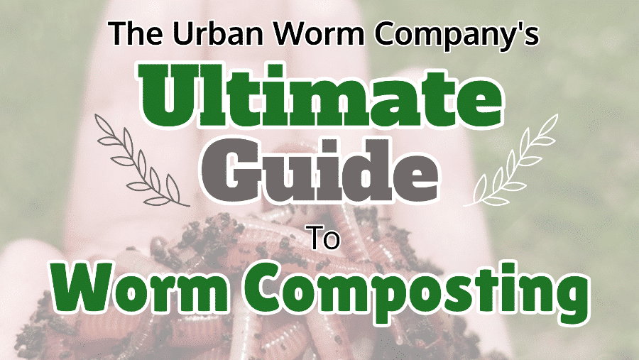 Vermicomposting: The Ultimate Guide for the Beginner and Beyond