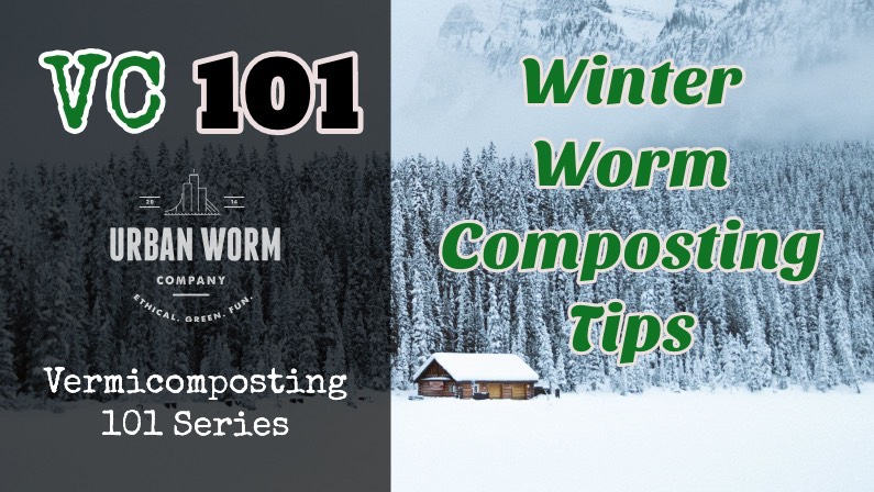 Winter Vermicomposting: How to Keep a Worm Bin Warm When It's Cold