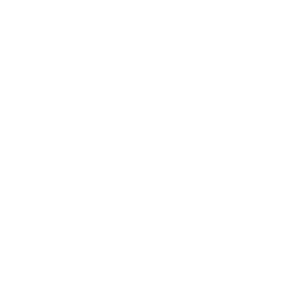 Universally Accessible
