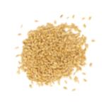 תמונה של זרעי חיטה