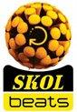 logo_skol beats.jpg