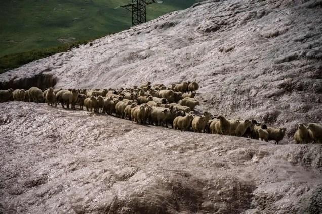 Georgien & Kaukasus Reisen