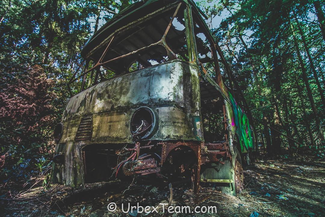 Jungle Bus 2