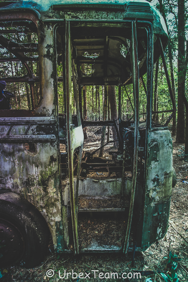Jungle Bus 7