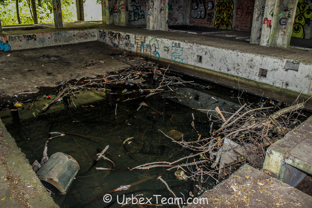 Swamp Hotel 3