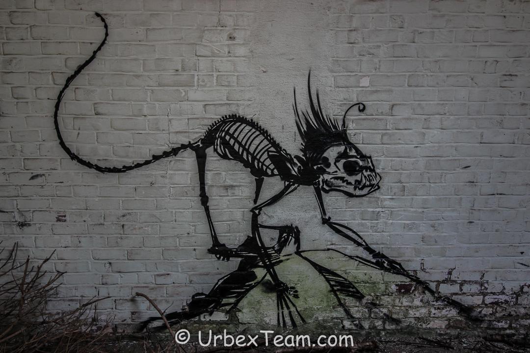 Usine Skelet 21