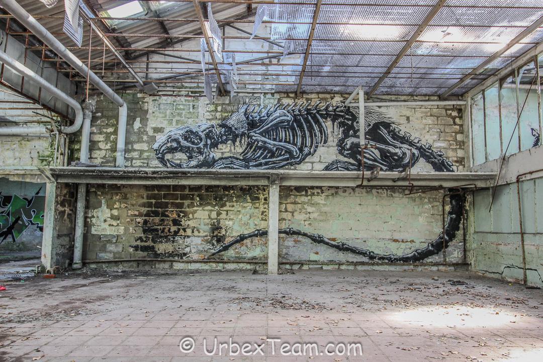 Usine Skelet 6