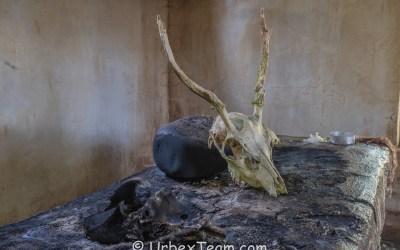 Skelet Chapelle