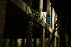 spookhotel-swamphotel-019