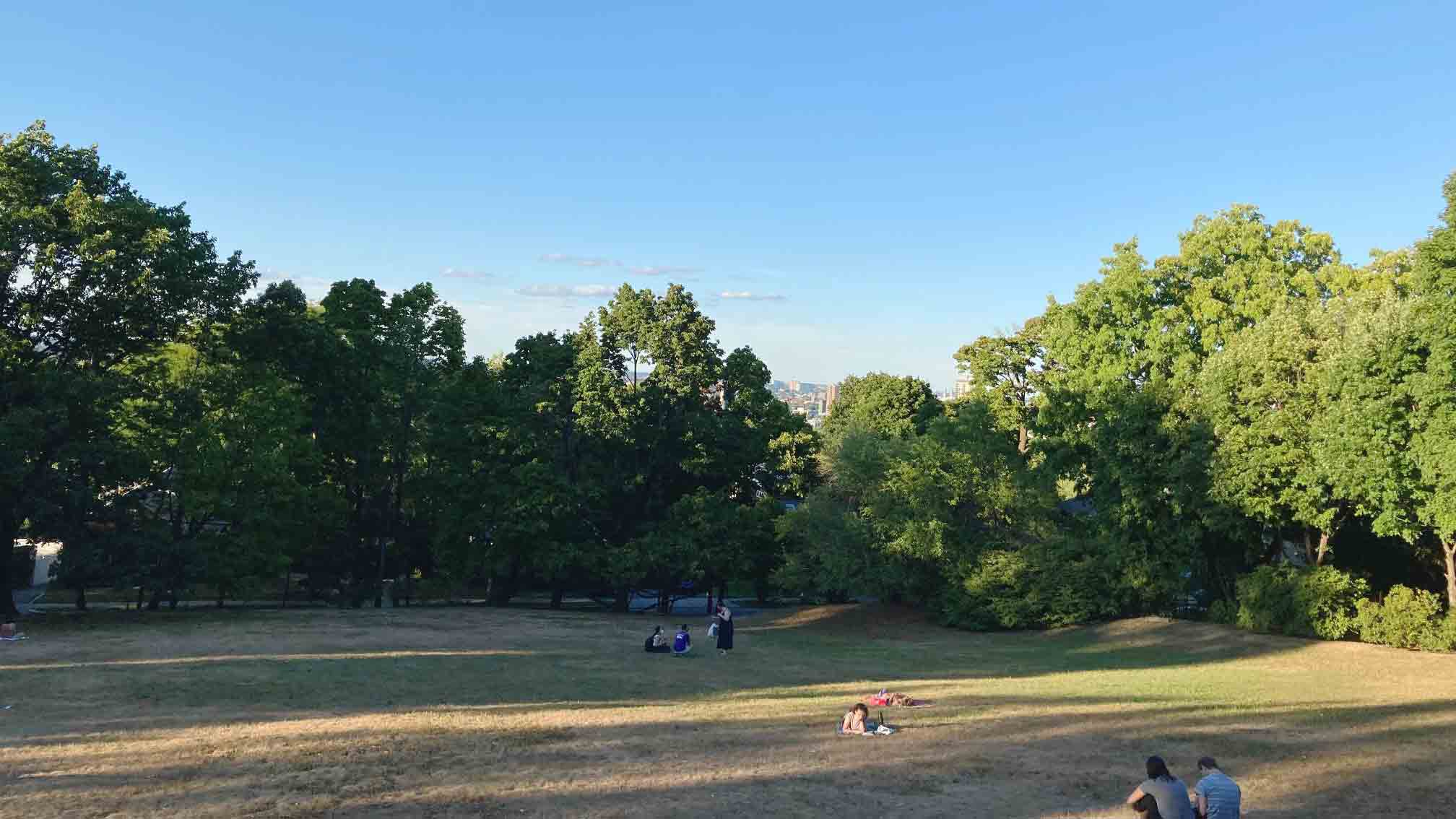 Corey Hill Playground
