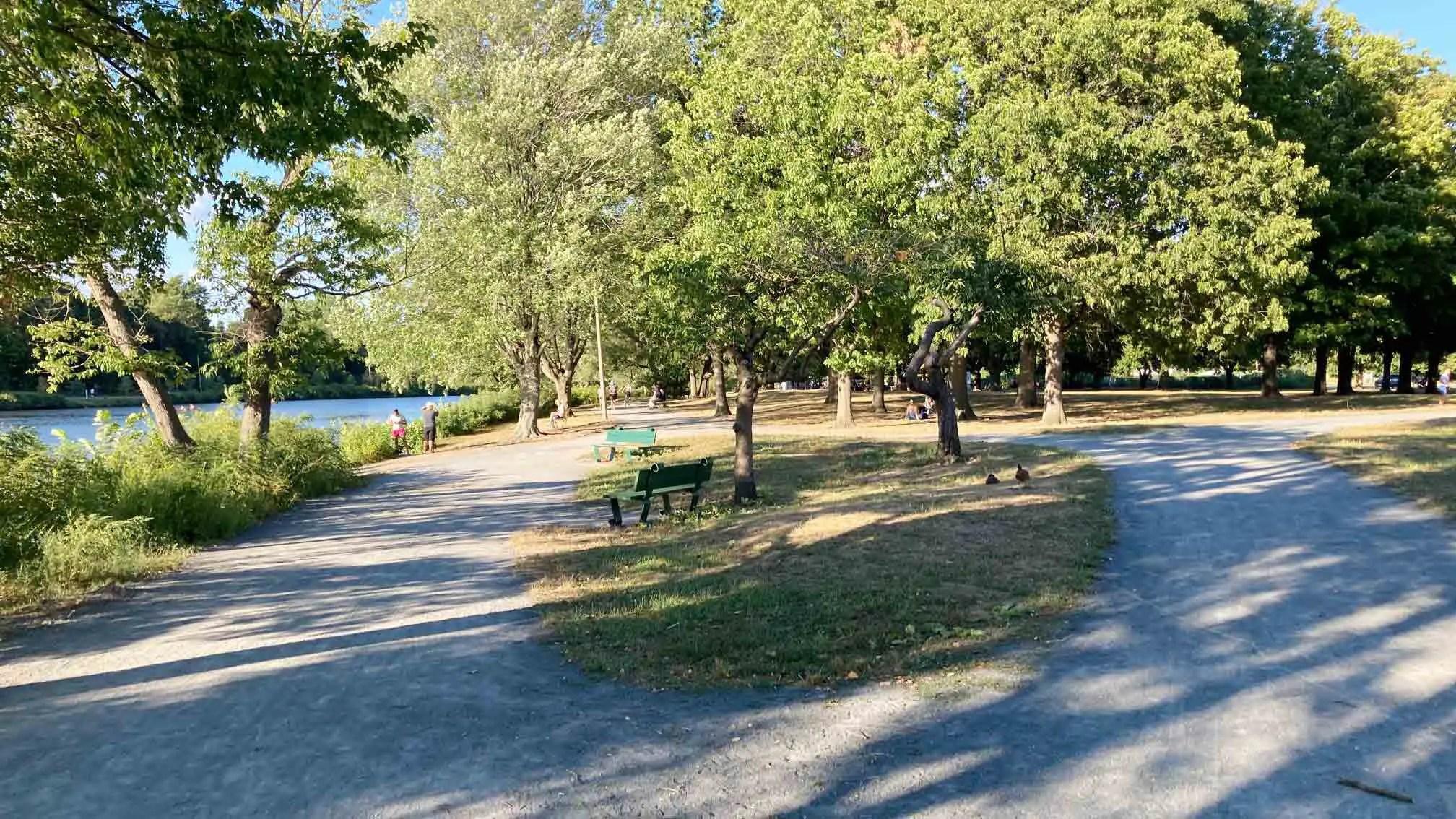 Herter Park in Allston, MA
