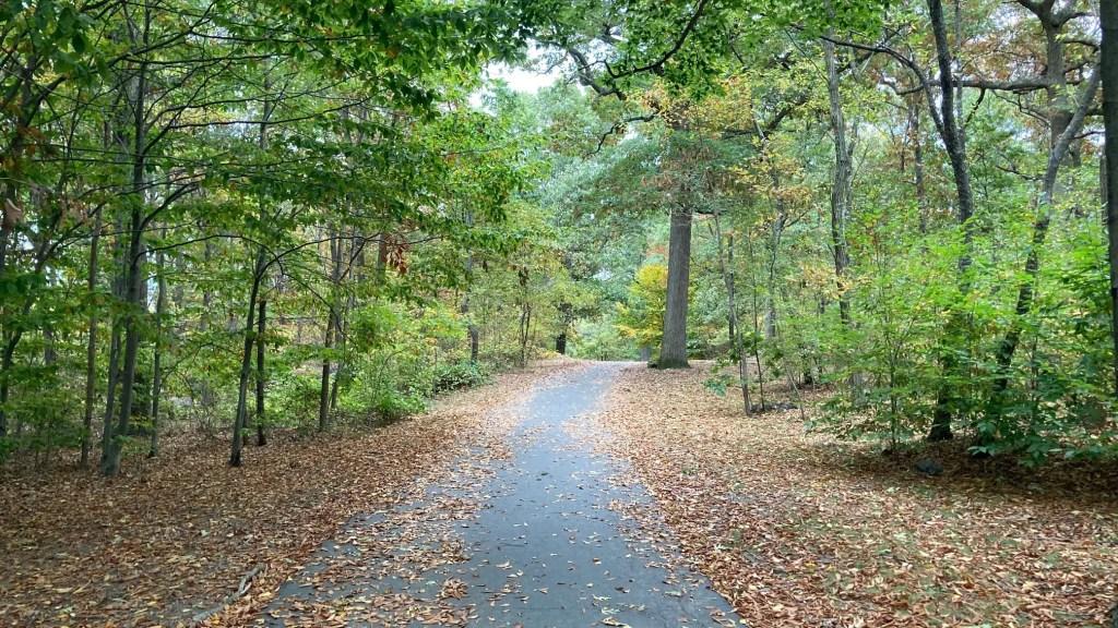 Dorchester Park in Dorchester, MA