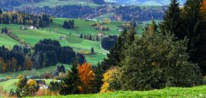 Сільський зелений туризм: другий етап розвитку ГО «Спілка сільського зеленого туризму України»