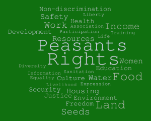 "International conference ""Towards the United Nations Declaration on the rights of peasants and other people working in rural areas"""