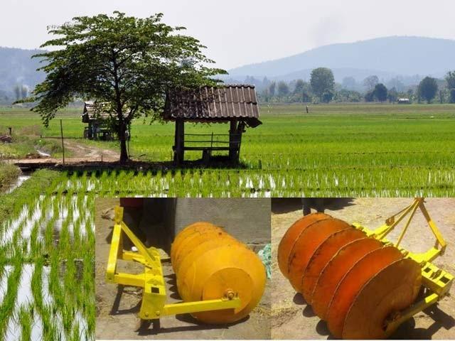 چاول کی کاشت کیلئے حیران کن مشین تیار کرلی گئی