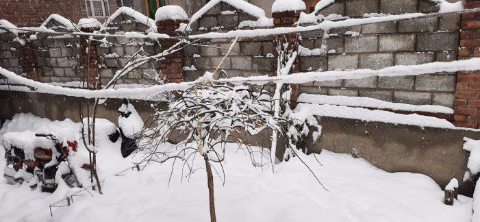 تازہ برفباری ،شہر میں معمولات زندگی پھر متاثر،دیکھئے تصویری جھلکیاں